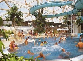 Hout beton schutting: leuke subtropische zwembaden